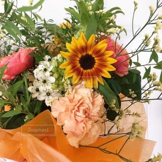 向日葵の花束の写真・画像素材[4251961]
