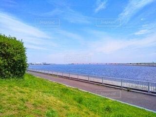 公園の芝生から見た運河の写真・画像素材[4400837]