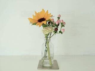 季節の花の写真・画像素材[4259031]