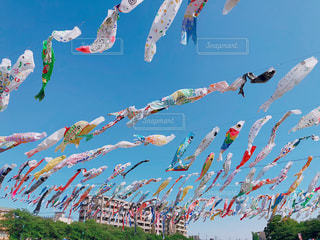 空で凧を飛ばす人々のグループの写真・画像素材[2692538]