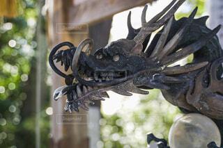 神社にある龍の像の写真・画像素材[4258834]