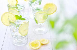さわやかな飲み物 レモンミント水の写真・画像素材[4260421]