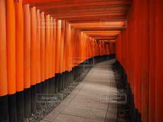 京都の写真・画像素材[181891]