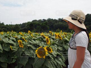 花の写真・画像素材[480611]
