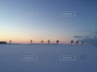 メルヘンの丘の写真・画像素材[4273361]