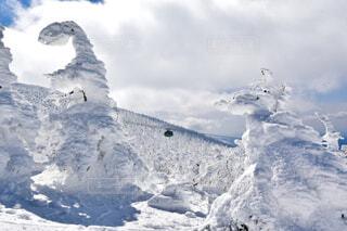 樹氷越しのゴンドラの写真・画像素材[4273366]