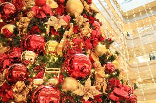 クリスマスツリーの写真・画像素材[865861]