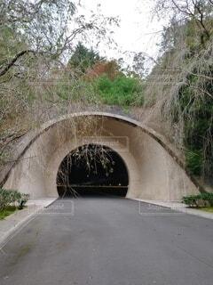 トンネルの先はの写真・画像素材[4288587]
