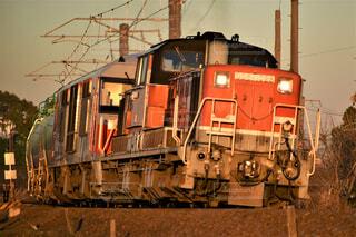 夕陽を浴びて走る貨物列車の写真・画像素材[4454800]