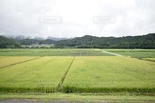 田舎の夏の写真・画像素材[4741720]