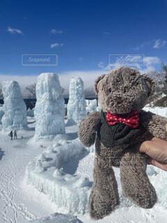 氷濤祭に訪れたクマの写真・画像素材[4300965]