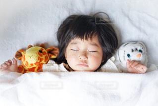 お昼寝の写真・画像素材[4381082]