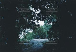 風景の写真・画像素材[185244]