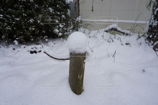 冬の写真・画像素材[183304]