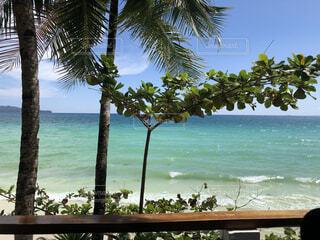 ボラカイ島の海の写真・画像素材[4313004]