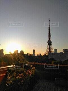 都会の夕暮れ 東京タワーの写真・画像素材[4304713]