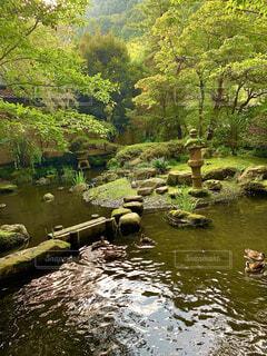 庭園の写真・画像素材[4306634]