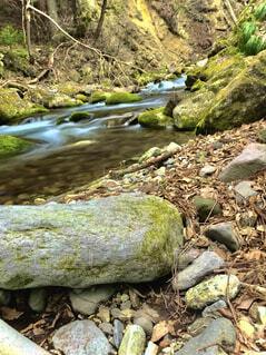 渓流の写真・画像素材[4320499]