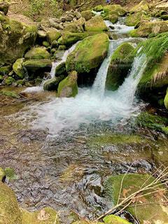 滝の写真・画像素材[4320500]