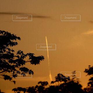飛行機雲の写真・画像素材[4383151]