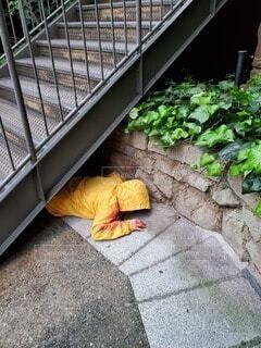 階段の下で倒れてる人の写真・画像素材[4308305]