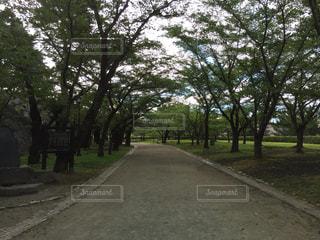 風景 - No.201340