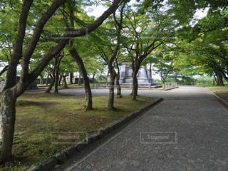 風景 - No.201348