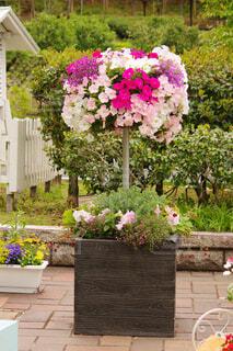春の花のオブジェの写真・画像素材[4376719]