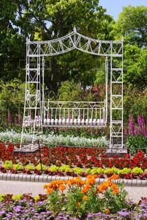 花に囲まれたブランコの写真・画像素材[4388666]