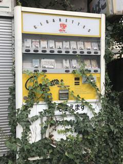 古い自販機の写真・画像素材[4319342]