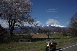 春 桜 浅間山 空 バイクの写真・画像素材[4364471]