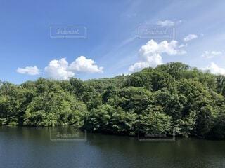 夏の風景「空と雲と緑と湖」の写真・画像素材[4754345]