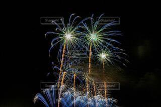 青春の青い花火の写真・画像素材[4337371]