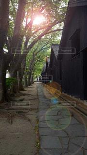 風景 - No.184710