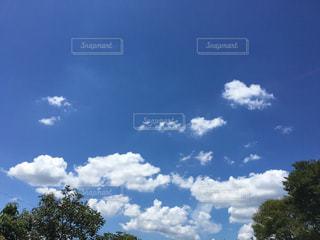 空の写真・画像素材[184793]