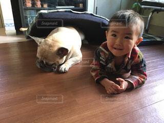 犬と子供の写真・画像素材[4342931]