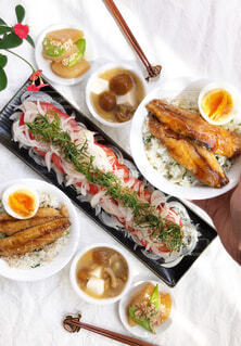 薬味たっぷり和食の写真・画像素材[4523903]