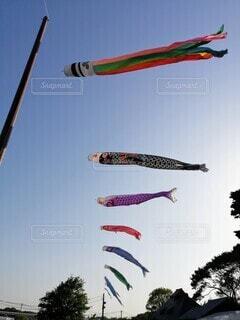 空を飛ぶ凧の写真・画像素材[4403085]