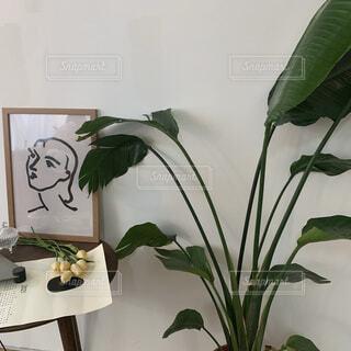 カフェハウスの写真・画像素材[4403958]