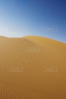 砂漠の斜面の写真・画像素材[4358797]