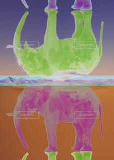 グリーンとピンクのゾウの写真・画像素材[4362042]