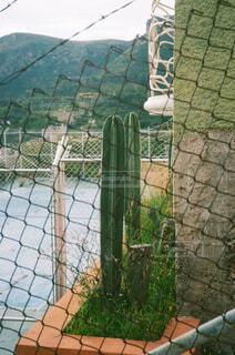 ワイヤーフェンスのこちらとあちら側の写真・画像素材[4362371]