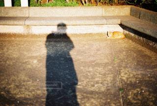 自分の影と猫の写真・画像素材[4361817]