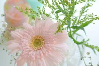 ピンクのガーベラとキャンドルの写真・画像素材[4603367]