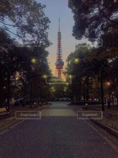 芝公園から見る夕暮れの東京タワーの写真・画像素材[4366838]