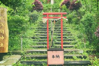 神社の写真・画像素材[4413152]