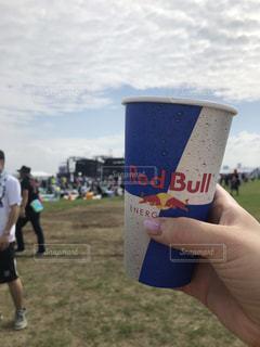 夏フェスで乾杯の写真・画像素材[1612856]