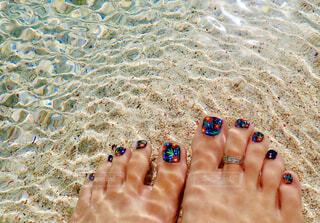 砂の中のサンゴの写真・画像素材[4370151]