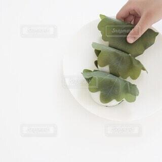 柏餅を持つ子供の手の写真・画像素材[4402405]