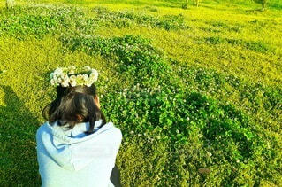 クローバー畑で座り込む少女の写真・画像素材[4383402]